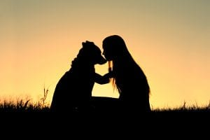 Woman with dog in sunset - Professional Dog Trainer