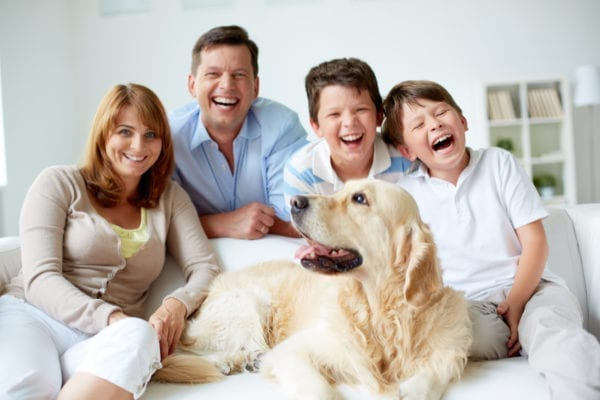 Family and their dog - Training my dog for visitors